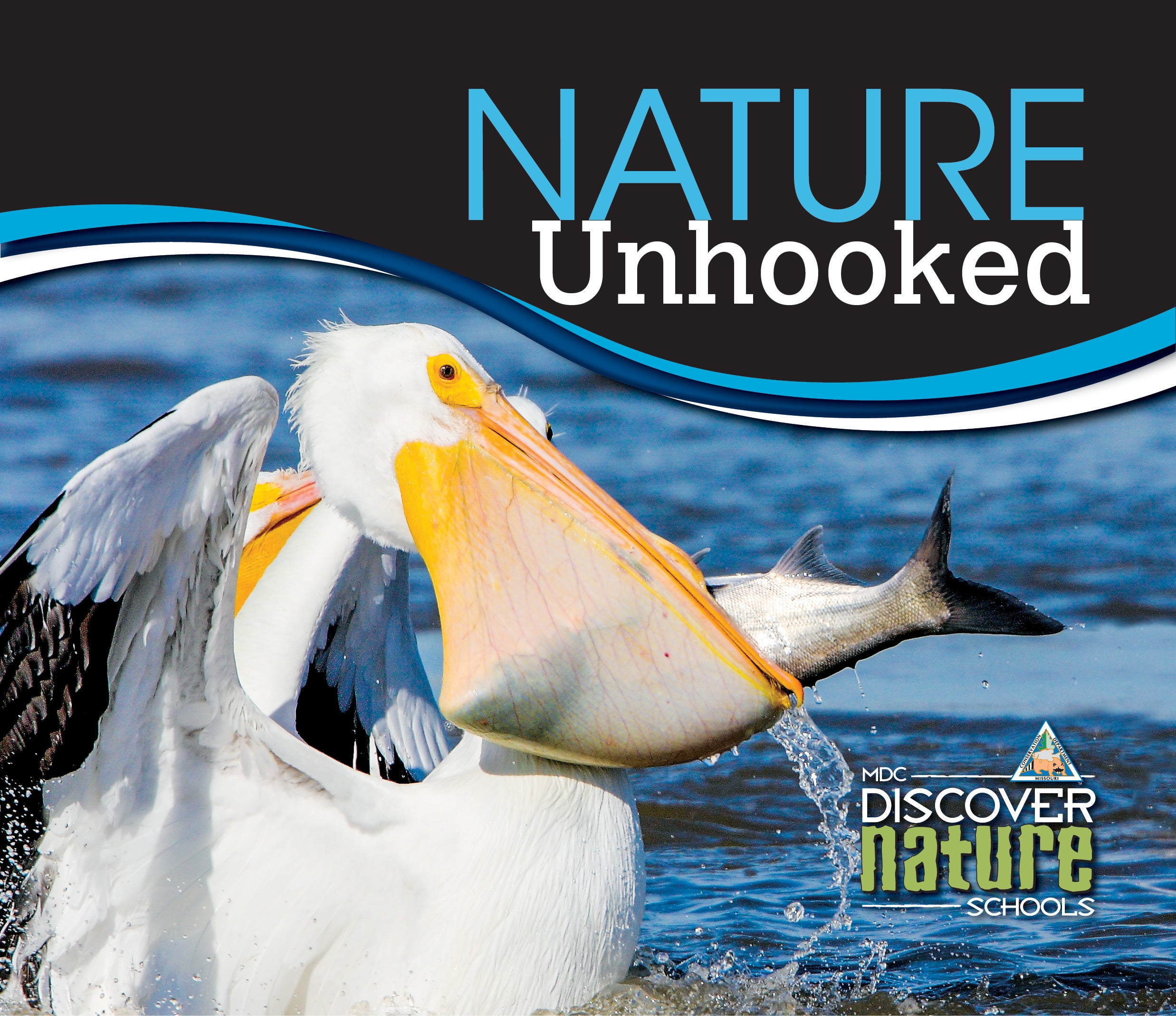 Nature Unhooked