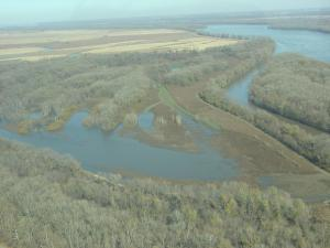 Aerial view of Bay Island, part of the Upper Mississippi CA
