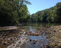 View downstream at Reiker Ford Access