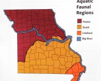 Map of the state of Missouri showing the four aquatic faunal regions