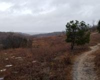 Brown grasses cover a rocky hillside on a cloudy, rainy day. A path winds its way across the hill.