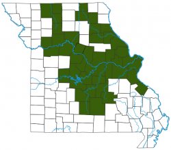 image of Blue Catfish Distribution Map