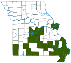 Eastern River Cooter Distribution Map