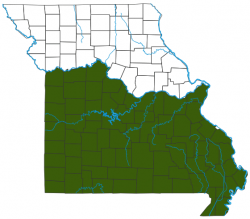 image of Missouri Tarantula Distribution Map
